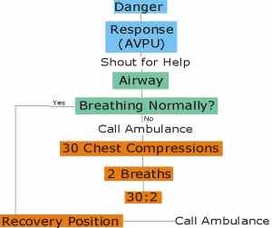 CPR Algorithm